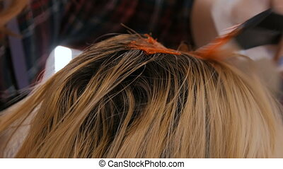 Professional hairdresser coloring hair of woman client at...