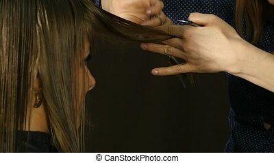 Professional hairdresser separates hair strands cutting...