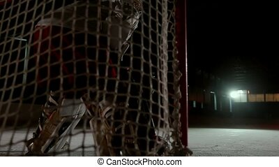 Professional hockey players play the shootout. The player...