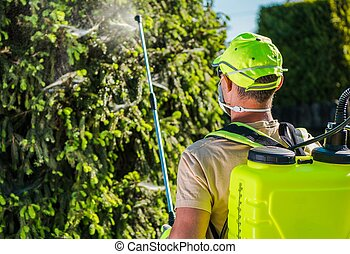 Professional Insecticide Service