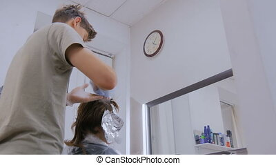 Professional male hairdresser coloring hair of woman client...