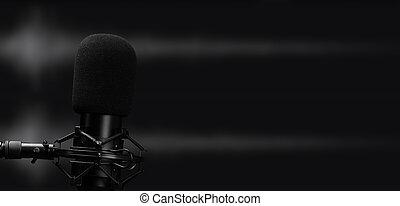 professional microphone for studio recording audio