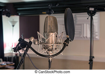 professional microphone in a recording studio