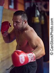 kick boxer training on a punching bag - professional...