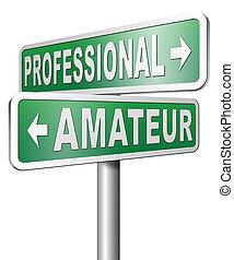 professional amateur expert novice or beginner skilled specialist or rookie
