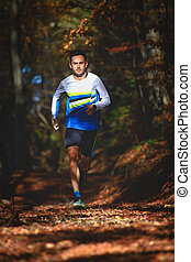 Professional runner in the woods during a workout