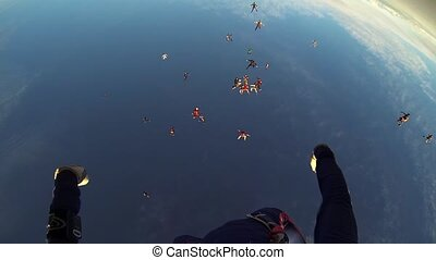 Professional skydivers falling in blue sky. Adrenaline....