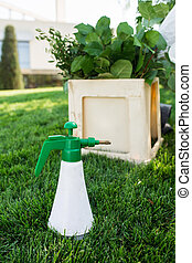 Professional tool florist - spray for flowers. Spray a bottle of green color stands on the lawn in the background of the box with flowers
