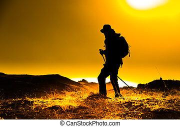 Professional Trekking Guide