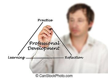 professionale, sviluppo