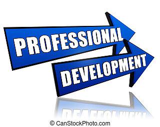 professioneel, ontwikkeling, in, pijl