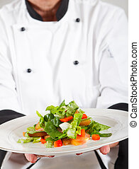 professionel, køkkenchef, aflægger