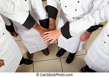 professionel, køkkenchef, teamwork