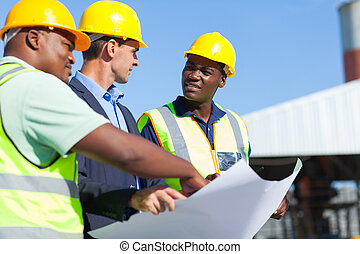 professionell, aufbau- arbeiter, und, architekt