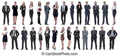 professionnels, réussi, isolé, fond, blanc