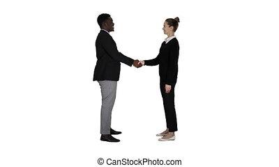 professionnels, secousse, arrière-plan., mains, rencontrer, blanc