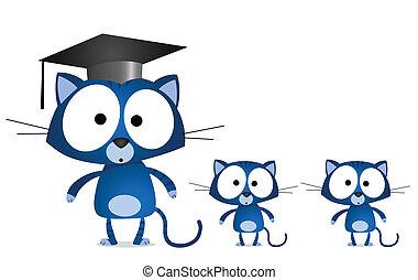 professor, gato