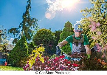profi, munka, kertész