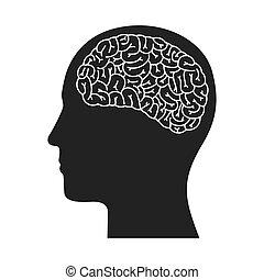 profil, głowa, ludzki