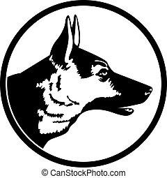profil, hund