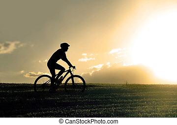 profil, silhouette, sport, homme, équitation, pays colère, vélo tout terrain