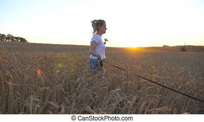Profile of young girl holding golden wheat stalks in hand and jogging with her siberian husky on leash across meadow. Caucasian woman running with her dog at cereal field on sunset. Close up Side view