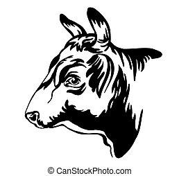 profilo, toro, astratto, ritratto, contorno