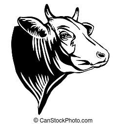 profilo, toro, incisione, ritratto, contorno