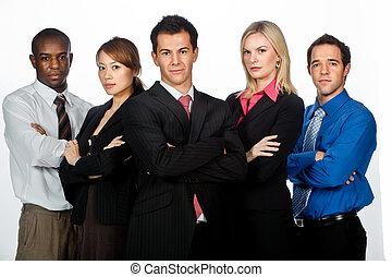 profissionais, negócio