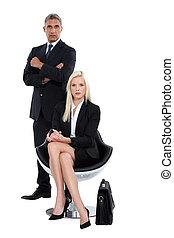 profissional, esperto, negócio, duo