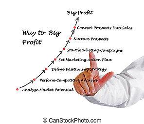 profit, stor, väg