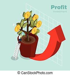 profitto, investimento