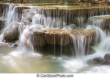 profond, forêt, chute eau