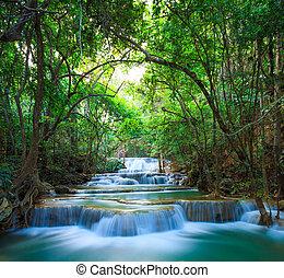 profondo, foresta, cascata, in, kanchanaburi, tailandia