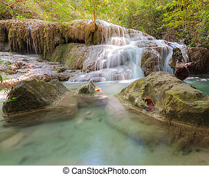 profondo, foresta, naturale, cascate