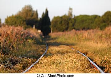profundidade, raso, field., estrada ferro, track.