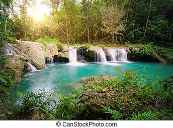 profundo, bosque, cascada, nacional, park.