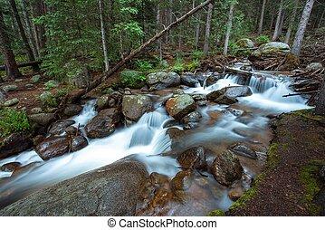 profundo, colorado, floresta, rio