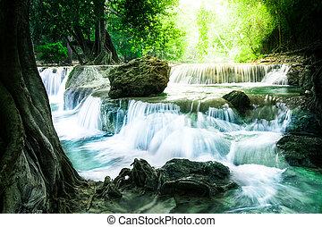 profundo, floresta, cachoeira, em, tailandia