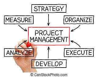 progetto, amministrazione, flusso, grafico