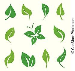 progetto serie, congedi verdi, elements.