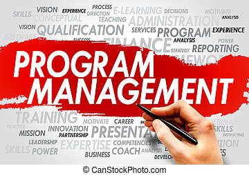 program, kierownictwo