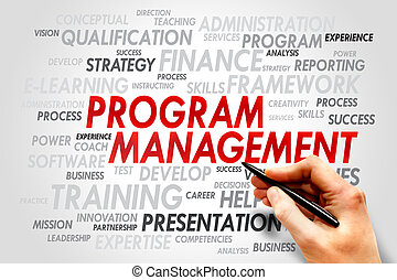 Program Management word cloud, business concept