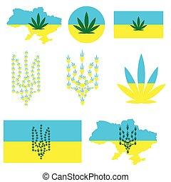 programma condizione, canapa, leaves., bandiera, emblema, ...