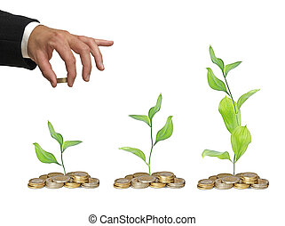 progreso, negocio verde