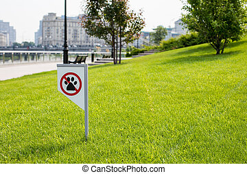 prohibiting sign you can not walk with a dog on green lawn. Walking no animals