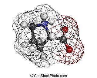 Proilne (Pro, P) amino acid, molecular model. Amino acids...