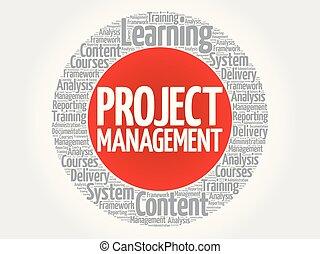 Project Management circle