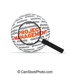 Project Management 3d Word Sphere with magnifying glass on...