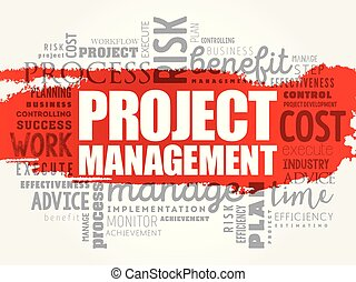 Project Management word cloud collage